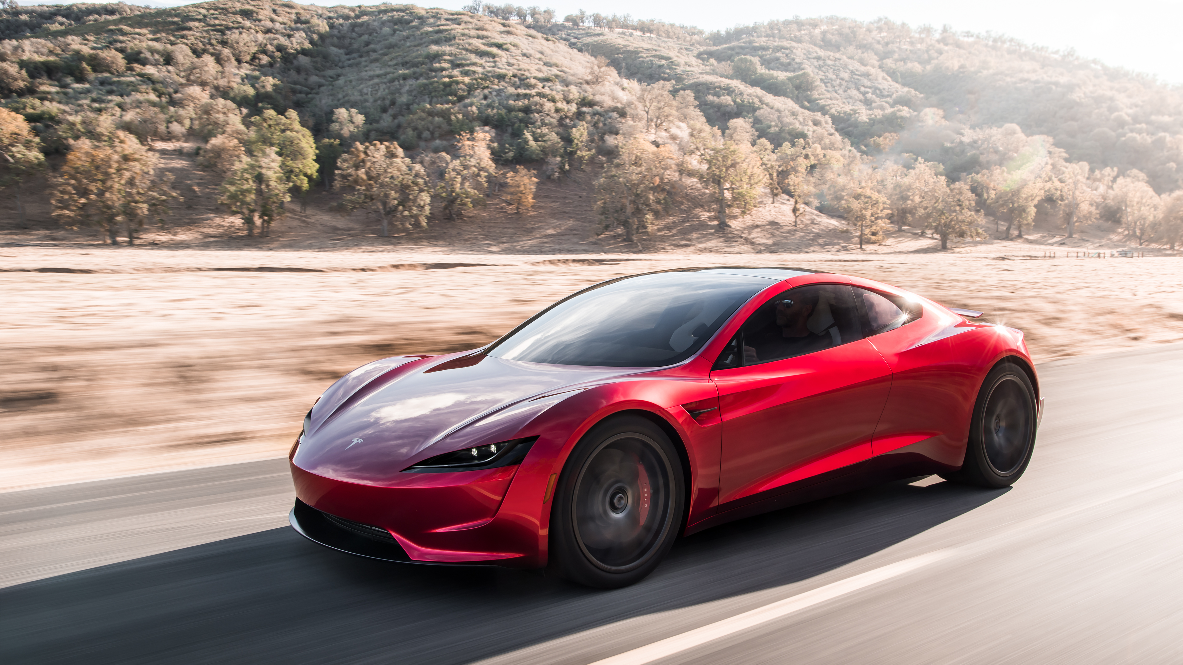 Tesla Roadster - Elon Musk
