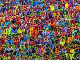 9 Must Read Facts About Colours