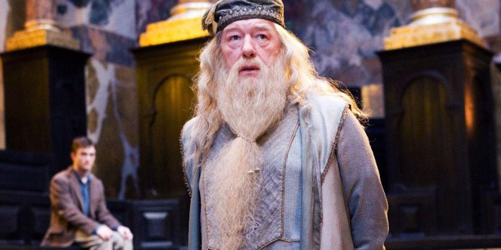 Dumbledoor To Your Harry Potter