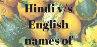 Hind vs English names of popular Indian food-min