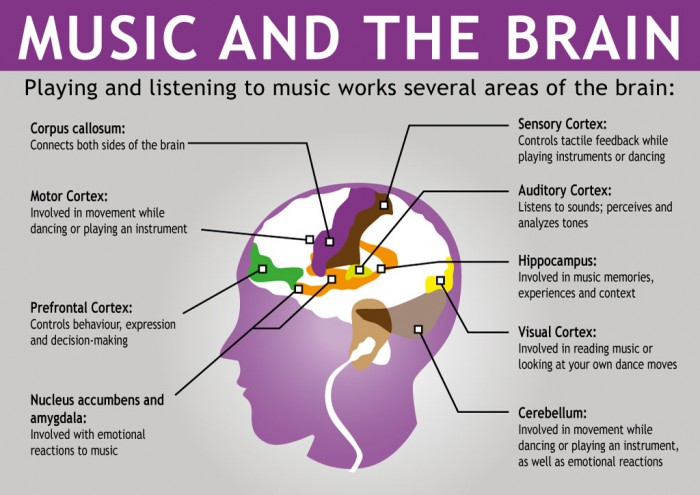 Neural Music affects different regions of brain