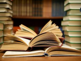 5 Career Paths For Book Lovers